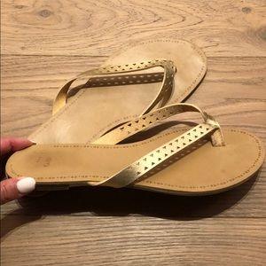Gap gold Flip flops